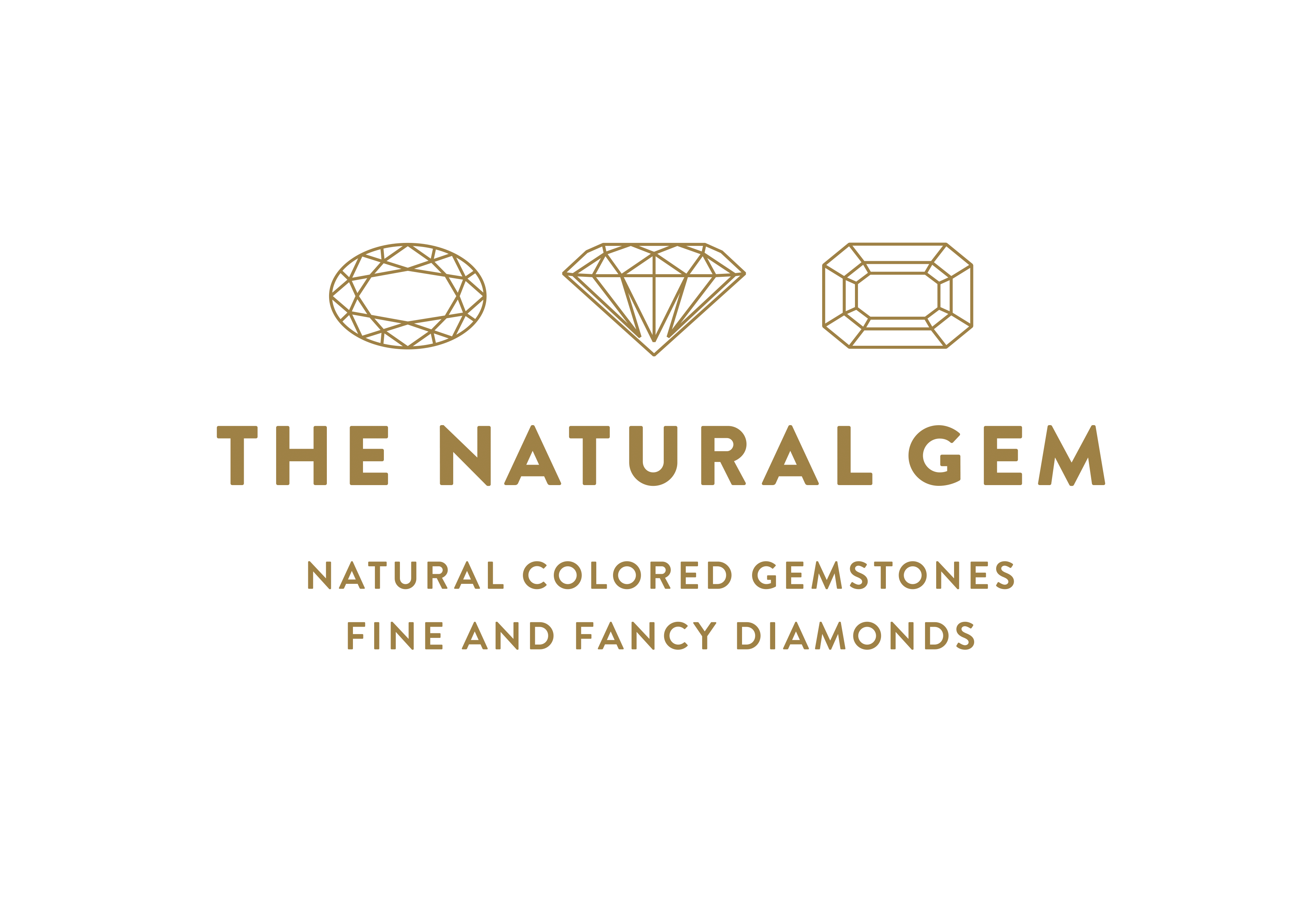 Logo TheNaturalGem